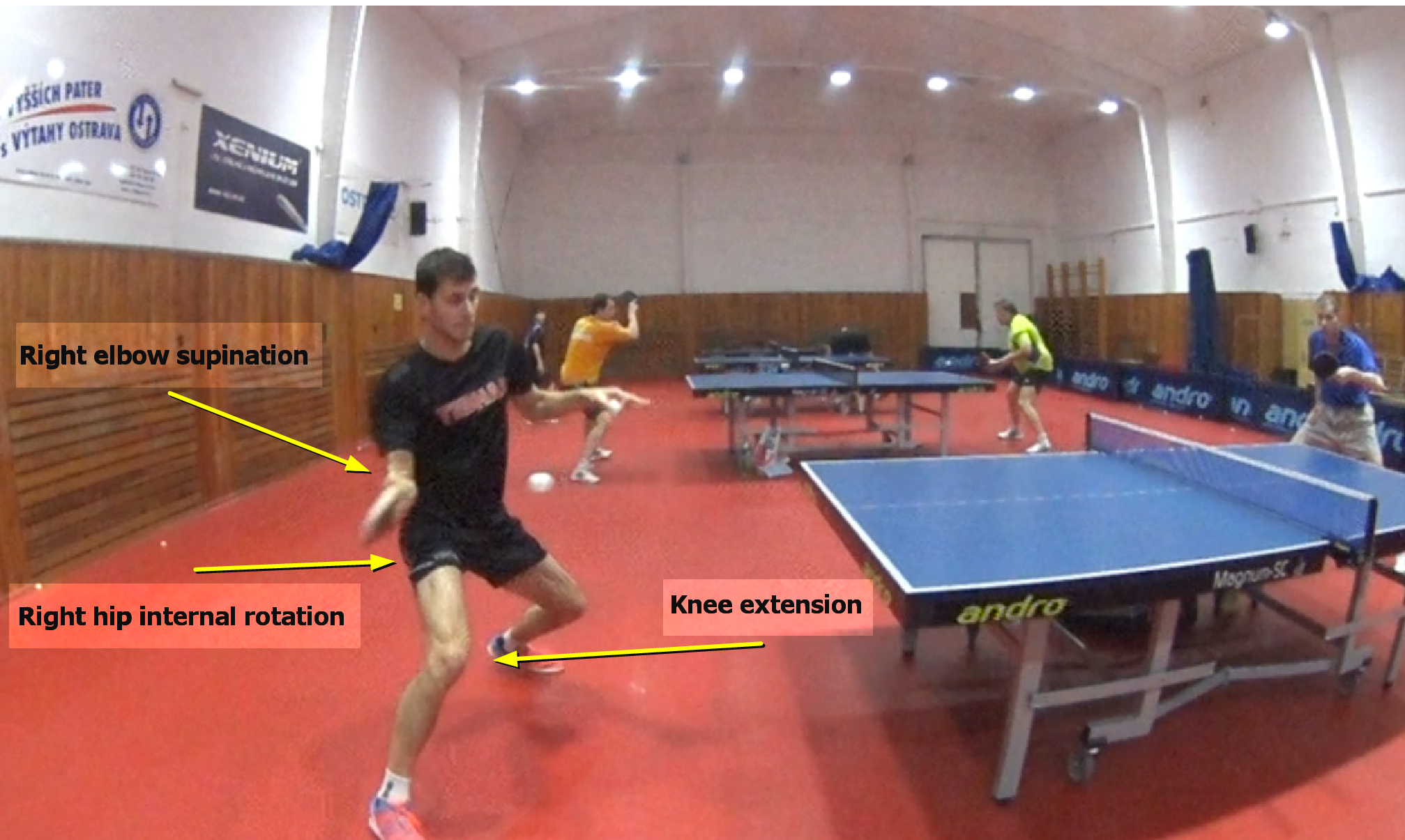 5 frames before Contact Point – Forehand Analysis