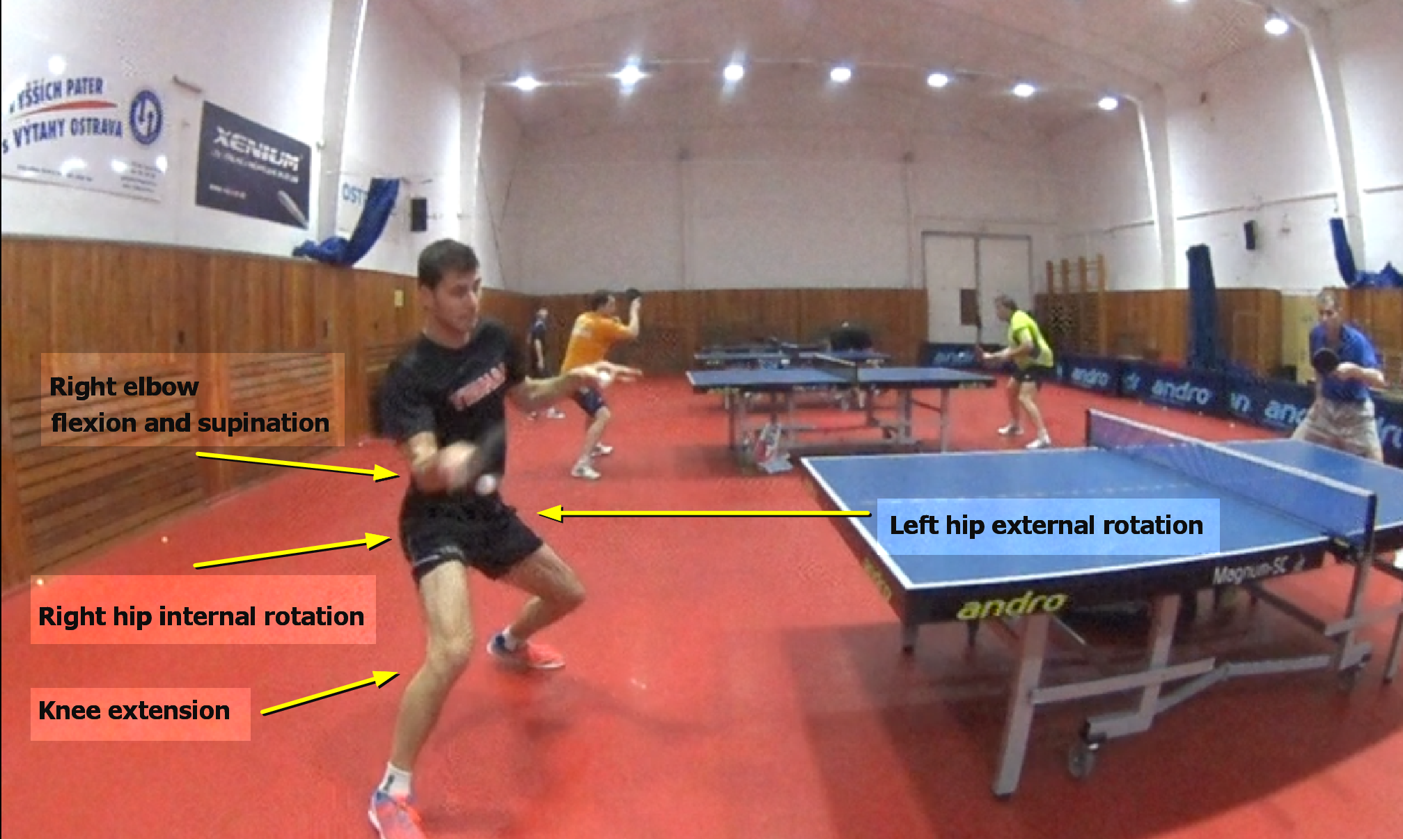 Contact Point – Forehand Analysis